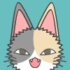 kittenheel